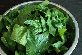 Benefits of China Spinach...