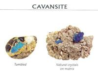 Benefits of CAVANSITE