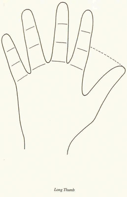 Palmistry besides How To Draw A Mermaid Proportions And Tails additionally  on short stubby person